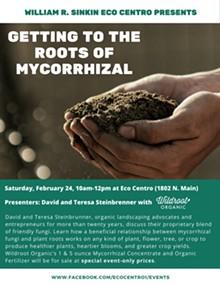 c1a8f4c0_mycorrhizal.jpg