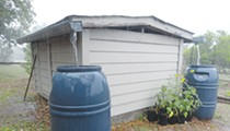 Urban Homesteader: Harvesting water
