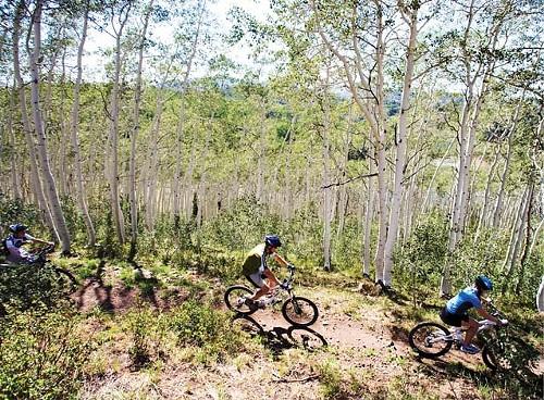 mountainbiking_deervalley.jpg