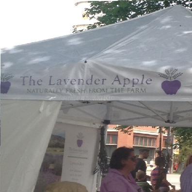 the_lavender_apple.jpg
