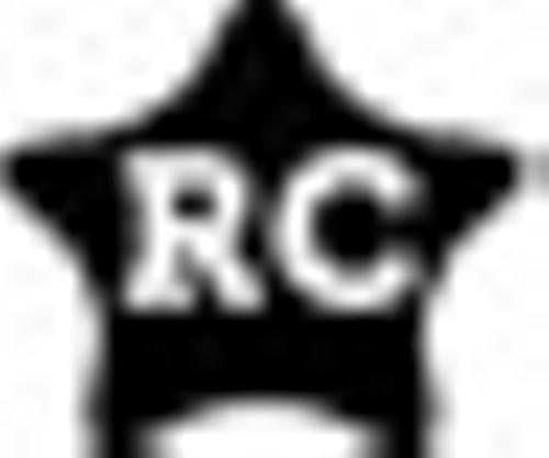 rc_bug.jpg