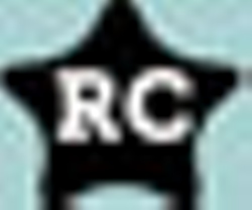 rc_bug_blue.jpg
