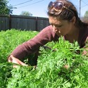 Burgeoning Business in Backyard Gardens