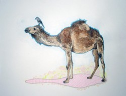 camel_and_bird.jpg