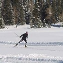 Cross-Country Skiing: Among the Safest Winter Sports
