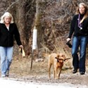 Dog Owners Refuse to Roll Over to Tanner Park Off-Leash Restrictions