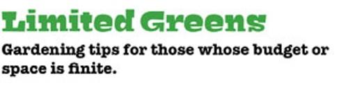 limited_greens.jpg