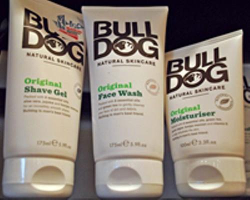bulldog_1.jpg