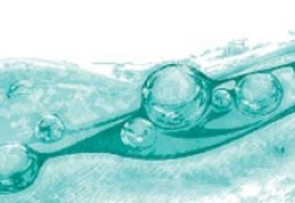 Green Guide 2014: The Water Issue