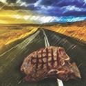 Harvesting Roadkill