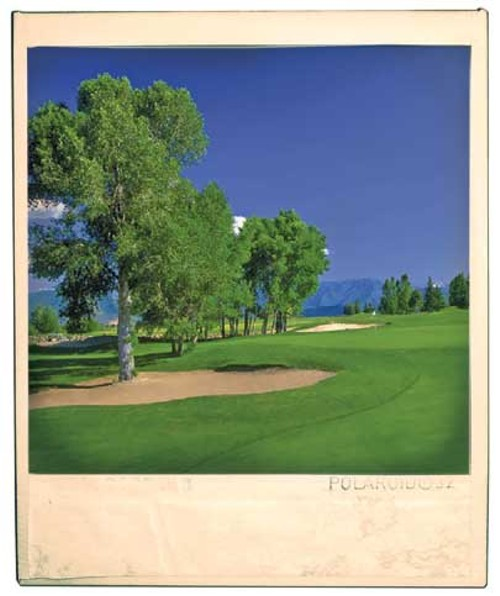 polaroid_craterspringsgolf_heber.jpg