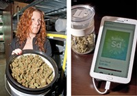 Left: Elan Nelson with one of Medicine Man's many 5-gallon buckets of bud Right: A Mary Jane display at Euflora
