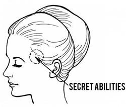 secrethead_1.jpg