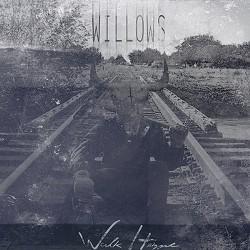 willows.jpg
