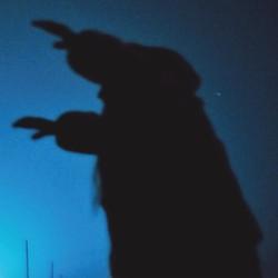 devilwhale.jpg