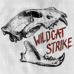 wildcatstrike.jpg