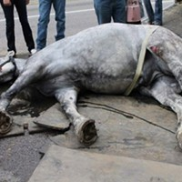 Petitions Call for End to Horse-Drawn Carriages in SLC