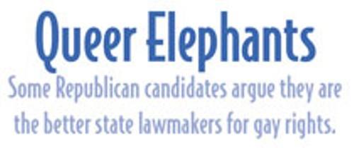 queer-elephants_1.jpg