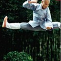Shaolin: Temple of Zen