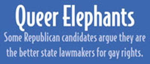 queer_elephants.jpg