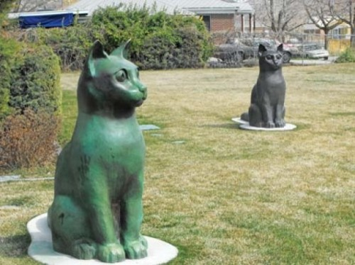 "Steenblik Park's ""Dairy Cats"" - JERRE WROBLE"