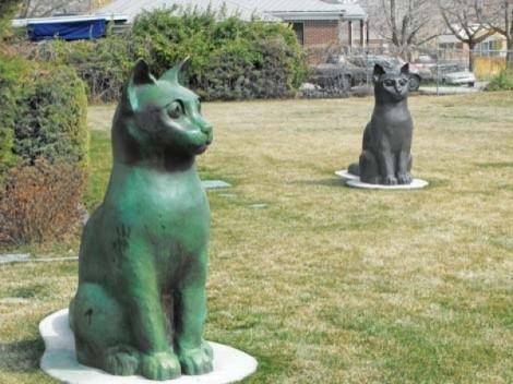 "Steenblik Park's ""Dairy Cats"" - JERRE WROBLE"