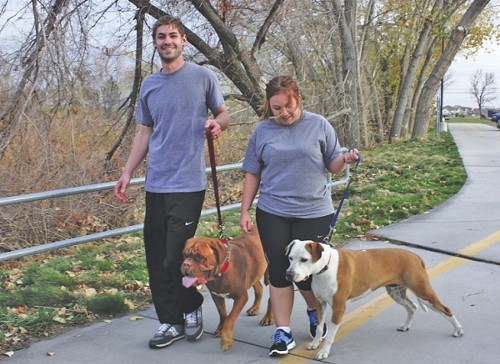 Taylor & Justine Lake walk their mastiff, Bell, and pit bull, Kingsley, along the Jordan River Parkway. - WINA STURGEON