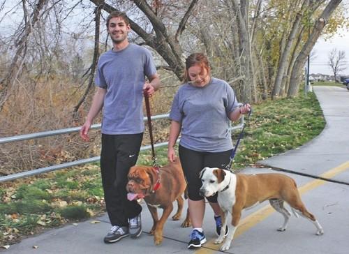 Taylor & Justine Lake walk their mastiff, Bell, and pit bull, Kingsley, along the Jordan River Parkway. - WINA STURGEON