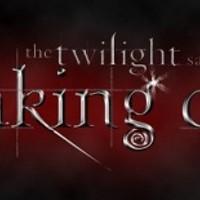 Twilight Breaking Dawn Midnight Party