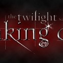 Twilight Breaking Dawn Midnight Party