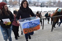 Josee Stetich carries a box of nearly 4,000 letters in support of public lands addressed to Gov. Gary Herbert up the Capitol steps. - RAY HOWZE