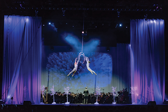 TRACEY BROWN PHOTOGRAPHY