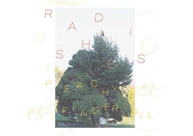 music-feature_peachy-fingernail---radishes-album-art.png