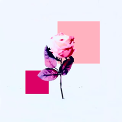 earthworm_s_meadows_single_art_.png