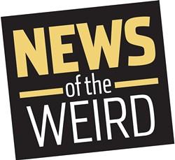 news_newsoftheweird1-1-3d62fdc8315626d3.jpg