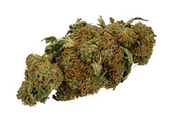 600px-marijuana-cannabis-weed-bud-gram.jpg