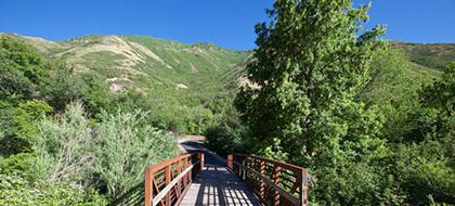 The Long, Dusty Trail