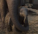 Movie Review: Dumbo (2019)