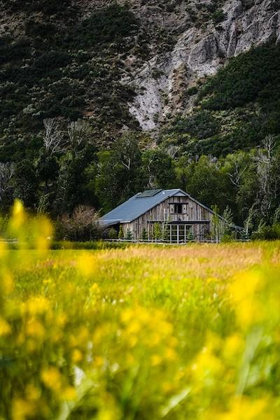 4U Ranch - COURTESY PHOTO