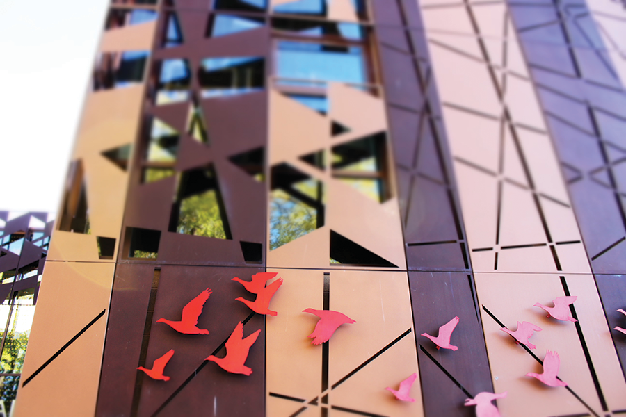 Laser-cut panels outside Tracy Aviary's façade, AJC Architects - ENRIQUE LIMÓN
