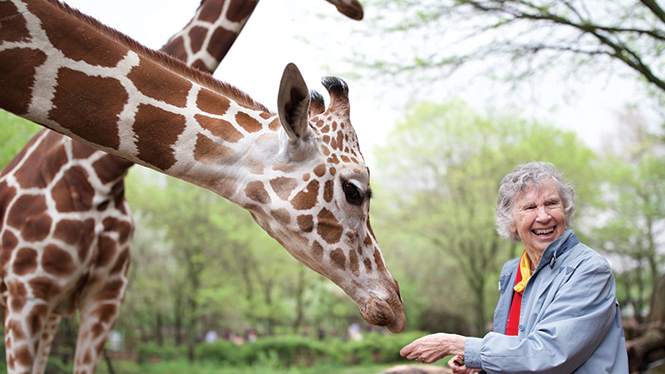 Dr. Anne Innis Dagg (and friend) in The Woman Who Loves Giraffes - KINO LORBER FILMS