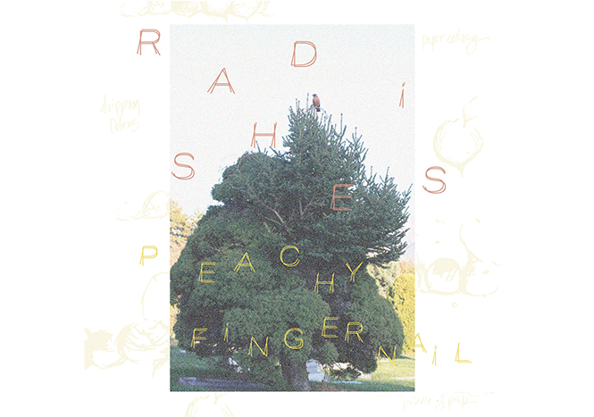 music-feature_peachy-fingernail---radishes-album-art.png