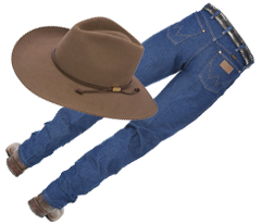 countryfest_sub23.png