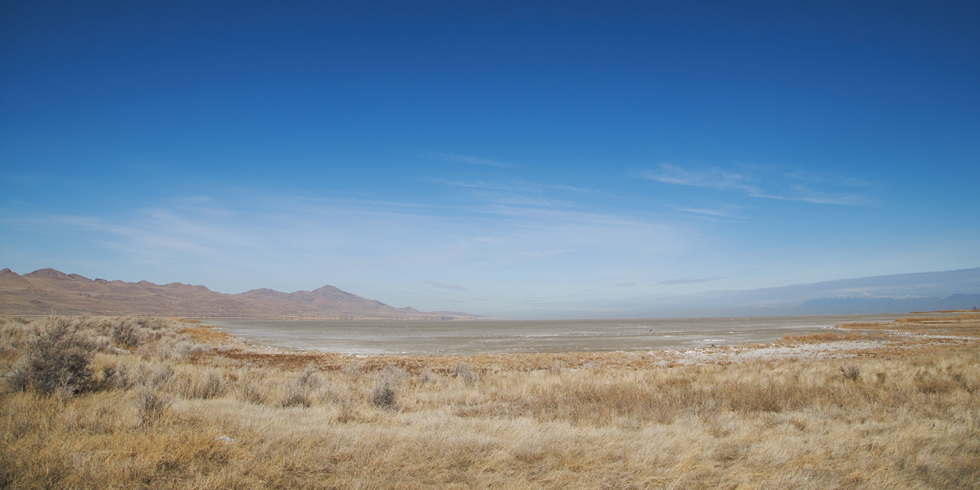 A view of the city's Northwest Quadrant from the Gillmor Audubon Sanctuary. - SARAH ARNOFF