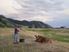 "<p class=""cwi"">Adam, a Wyoming schoolteacher, helps the Mortensen family kill and butcher a Hereford cow. The Mortensens own the last remaining ranch within Afton town limits. Their neighbors sold and developed the surrounding property during the housing boom of the past decade.</p>"