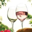Rosé Roundup