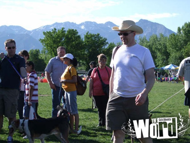 Strut your Mutt a fundraiser for No More Homeless Pets