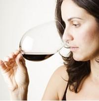 Wine Tasting & Judging