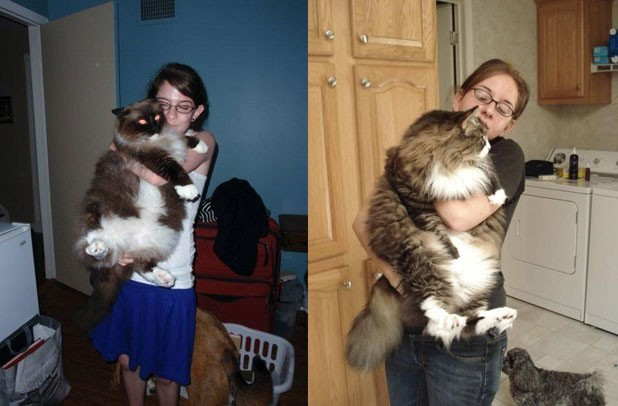 fatcats-andychubbers.jpg