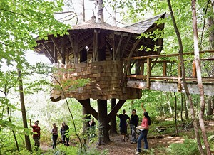 A tree house on the Yestermorrow campus